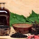 The Powerful Immune-Boosting Benefits of Elderberry