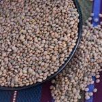What to Do with Lentils? - Pardina Lentils Recipe